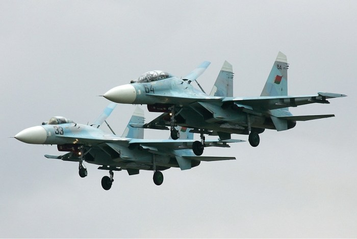 Belarus_Air_Force_Sukhoi_Su-27UB_Pichugin-1